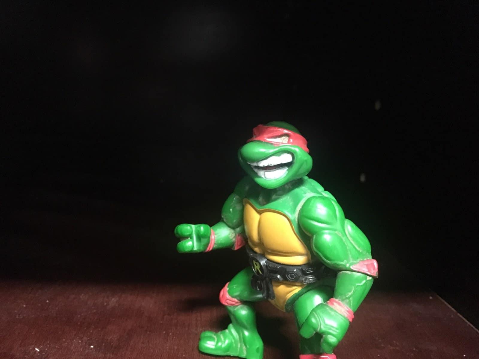 kitchen-vs-bathroom-wars-best-online-cabinets-ninja-turtle-raphael