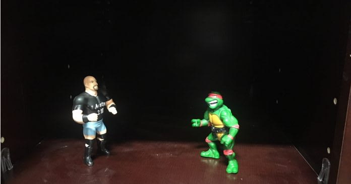 kitchen-vs-bathroom-wars-best-online-cabinets-steve-austin-ninja-turtle