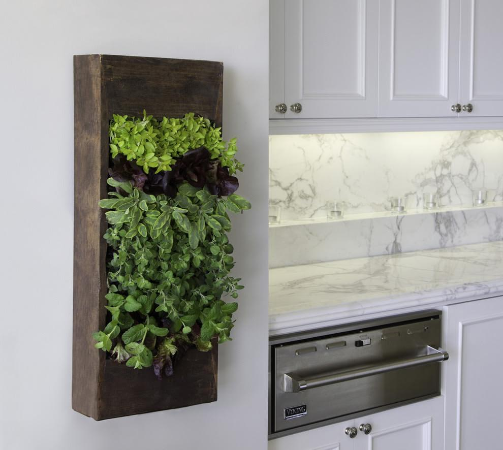 green-healthy-kitchen-cabinets